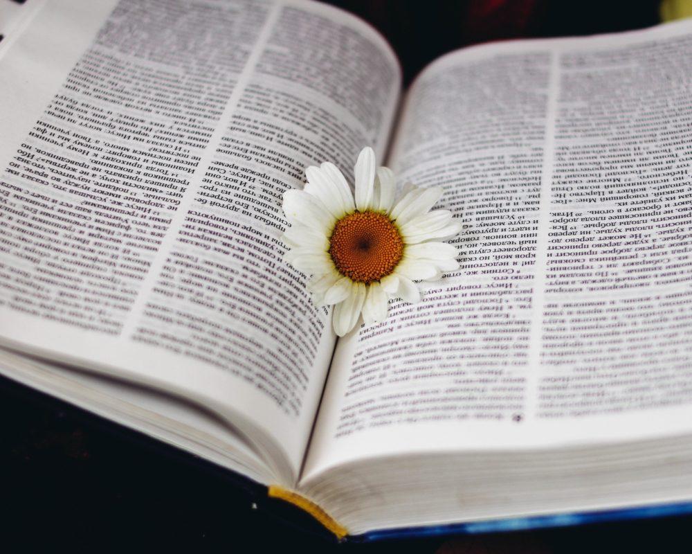 Bibelstudium – Avslutning